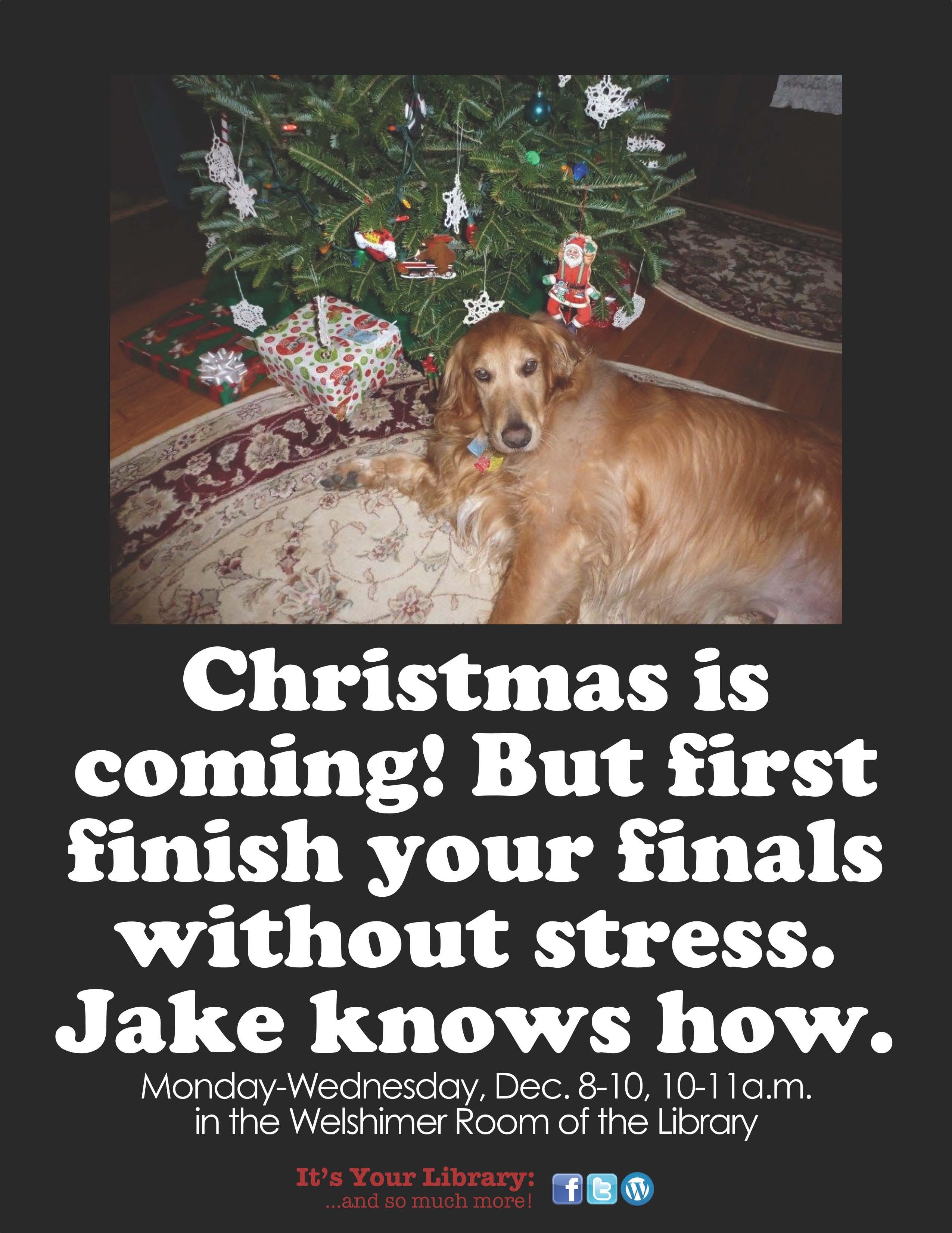 Jake Fall2014